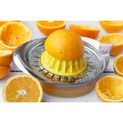 Sizilianische Bio Orangenkiste aus Saft 10 Kg