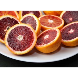 Organic Red Oranges Tarocco Organic Kg.16 box