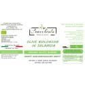 Olive biologiche e convenzionali