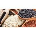 Pasta BIO (in allestimento)