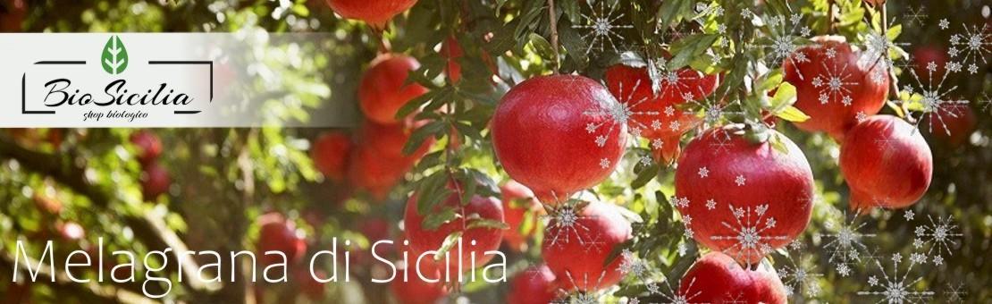 Bio Sicilia di Cracchiolo